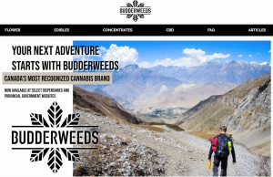 Budderweeds Review