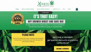 XpressGrass Review