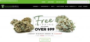 Buy My Weed Online Review