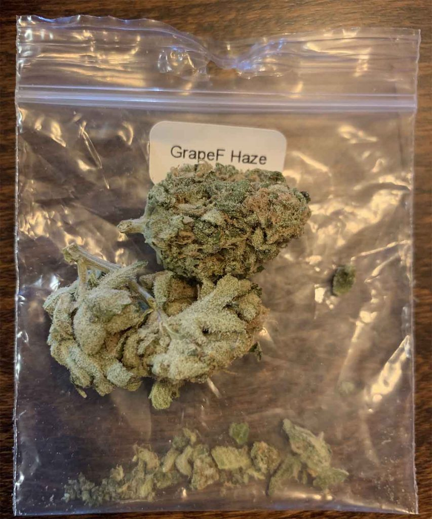 The Grapefruit Haze from Pot Cargo