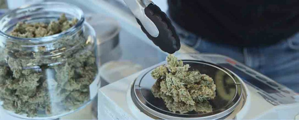 Online Dispensary Canada Guide - Best Places to Buy Weed