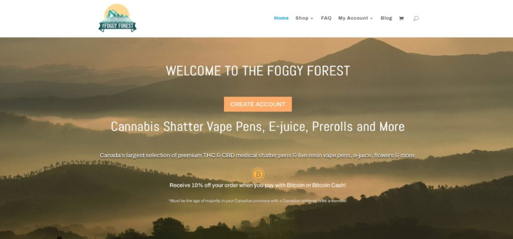 The Foggy Forest review & coupon codes.